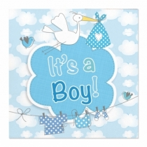 It's a boy lautasliina